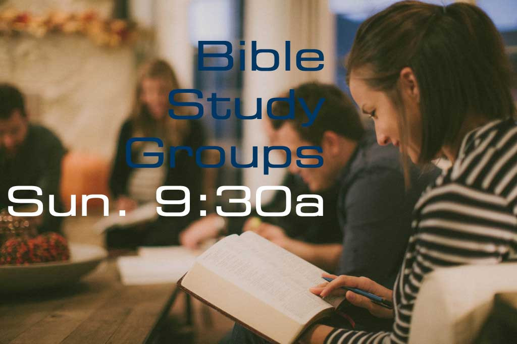 Adult Bible Studies
